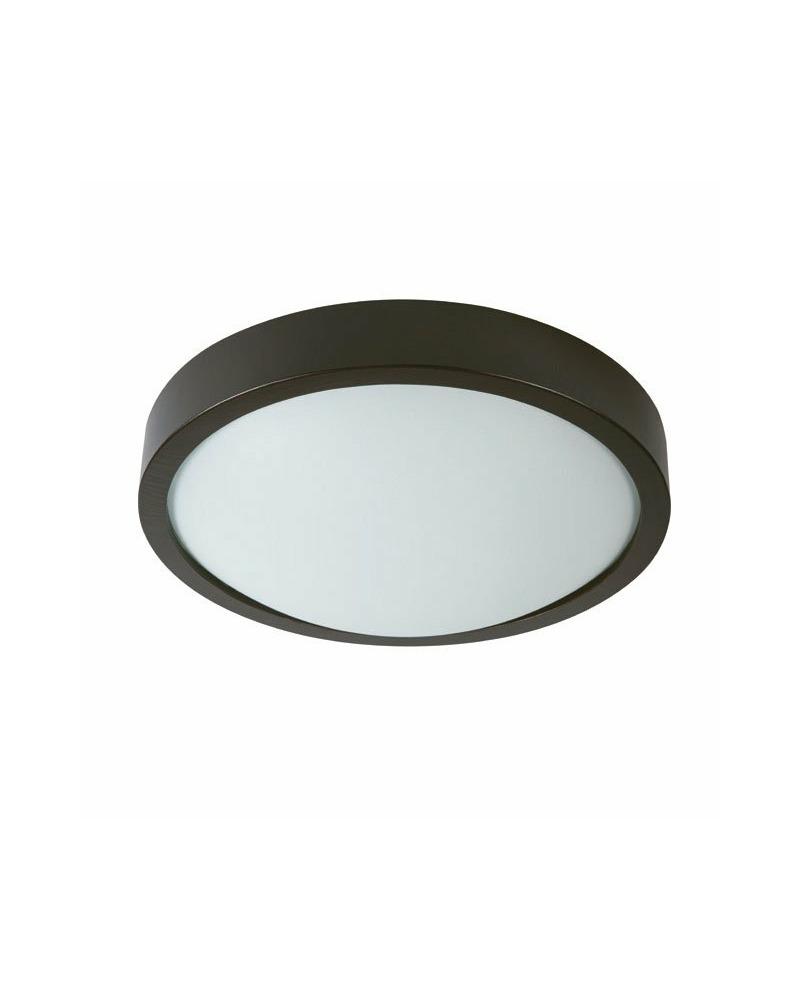 Потолочный светильник Kanlux 26102 Olie