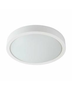 Потолочный светильник Kanlux 26101 Olie