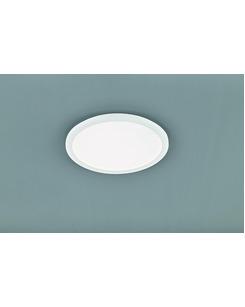 Потолочный светильник Trio R62922401 Camillus