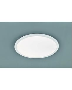 Потолочный светильник Trio R62923001 Camillus